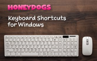 Keyboard Shortcuts for Windows