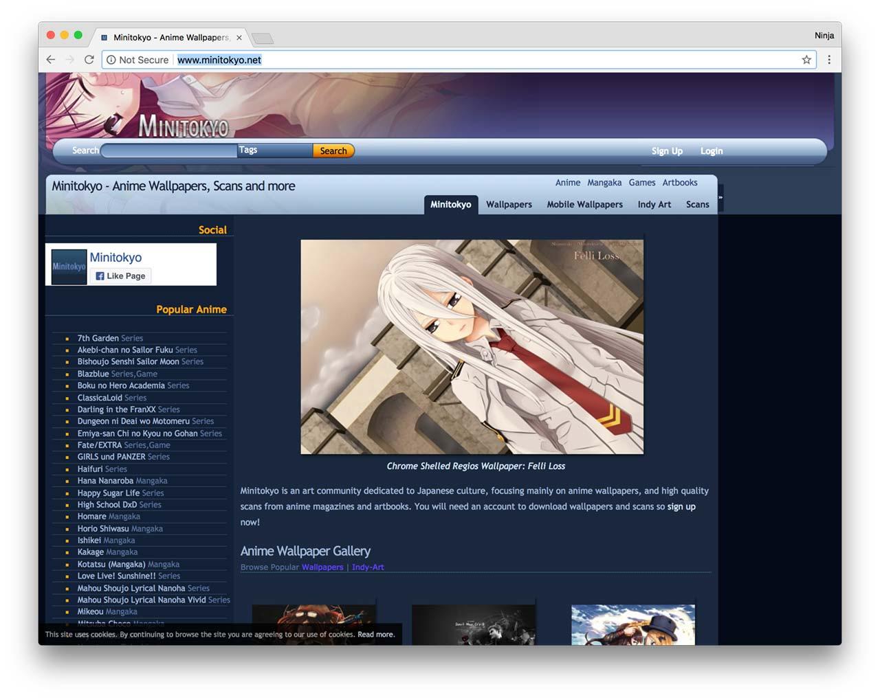 Minitokyo Screenshot