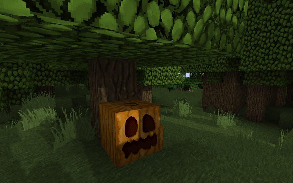Carved pumpkin in Minecraft.